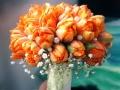 Оранжевый яркий букет