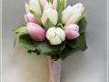 Белый и розовый тюльпан