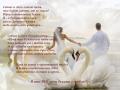 Поздравление невесты жениху
