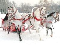Сценарий выкупа невесты зимой